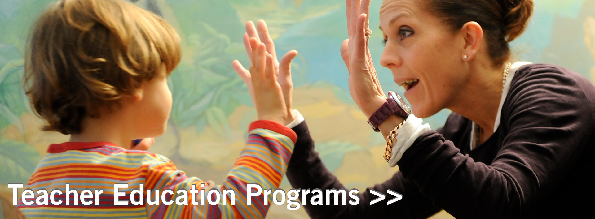 Teacher Education Programs banner