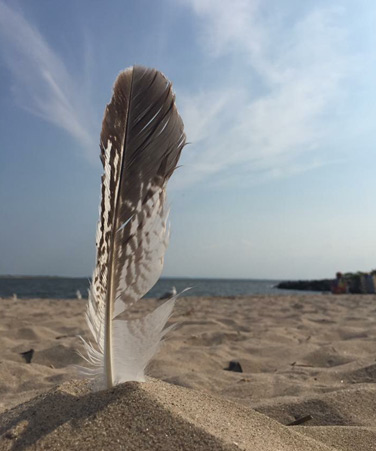 April 2018 Student Photo Challenge winning picture by Kingsborough Community College student Anonina Darmetta, Kingsborough Community College