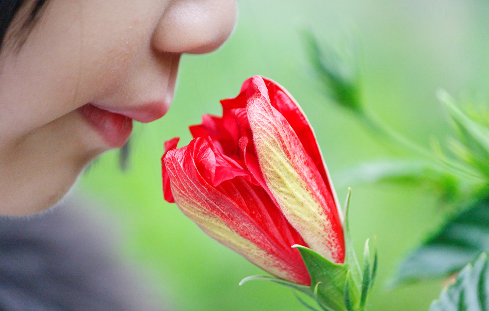 Child smelling a flower